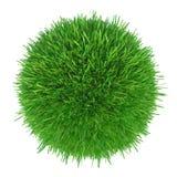Morceau rond d'herbe cultivée à installer Image stock