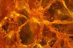 Morceaux d'ambre Image libre de droits
