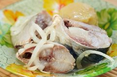 Morceaux d'harengs marinés aux oignons et aux pommes de terre photos libres de droits