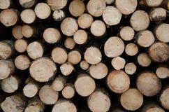 Morceaux de bois image libre de droits