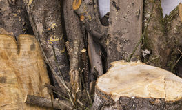 Morceaux de bois de construction aléatoire Photos stock