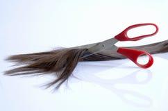 Morceaux de cheveux coupés avec des ciseaux rouges Images stock