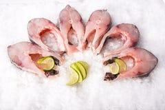 Morceaux de coupe de poisson frais Image stock