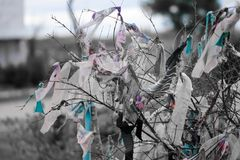 Morceaux de tissus attachés sur des branches d'arbre pour le souhait photos stock