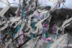 Morceaux de tissus attachés sur des branches d'arbre pour le souhait photo stock