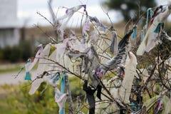 Morceaux de tissus attachés sur des branches d'arbre pour le souhait photographie stock libre de droits