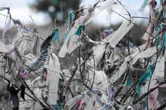 Morceaux de tissus attachés sur des branches d'arbre pour le souhait images libres de droits