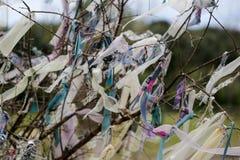 Morceaux de tissus attachés sur des branches d'arbre pour le souhait photos libres de droits