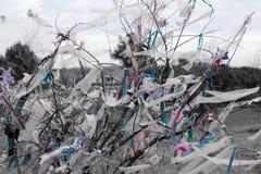 Morceaux de tissus attachés sur des branches d'arbre pour le souhait photo libre de droits