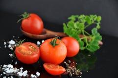 Morceaux de tomate fraîche Photos libres de droits
