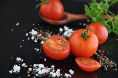 Morceaux de tomate fraîche avec l'épice Photos libres de droits