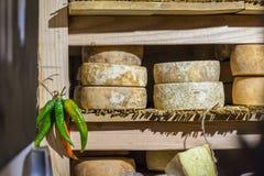 Morceaux ronds de fromage Images stock