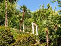 Morcote, parco di Scherrer Fotografia Stock Libera da Diritti