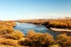 Mordaga autumn scenery. Inner Mongolia river in autumn of China Royalty Free Stock Photos