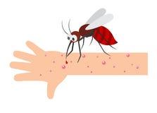 Mordedura de mosquito stock de ilustración