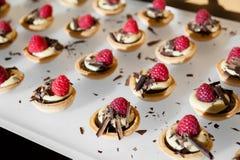 Mordeduras de los pasteles de la frambuesa y del chocolate con las virutas del chocolate fotos de archivo