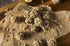 Mordeduras libres de la fecha del gluten sano hecho en casa crudo foto de archivo