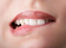 Morder sus dientes rojos de los labios Fotografía de archivo libre de regalías