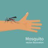 Mordida de mosquito no ser humano da mão da pele ilustração stock
