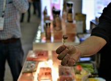 Mordidas de oferecimento do alimento na feira profissional imagem de stock