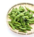 Mordidelas de Edamame, feijões verdes fervidos da soja, alimento japonês Foto de Stock