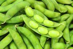 Mordiscos de Edamame, habas verdes hervidas de la soja, japonesas Fotos de archivo