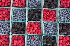 More dei mirtilli delle fragole Fotografie Stock Libere da Diritti