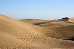 More dunes with travelers tracks with blue sky Stock Photography
