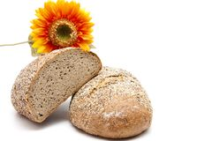 More grain bread with sunflower Royalty Free Stock Images