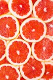 More of grapefruits Royalty Free Stock Images