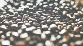 More and more koffie Stock Foto's