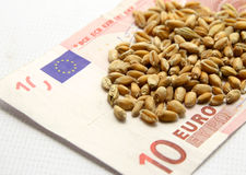 More money for wheat now. Increase the price of wheat caused by poor harvest Stock Photos