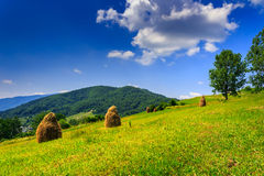 More Mountain Stack of hay with trees Stock Photos