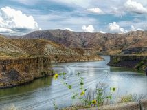 More's Creek. At the Boise River Royalty Free Stock Photography