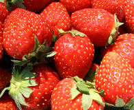 More Strawberries Stock Image