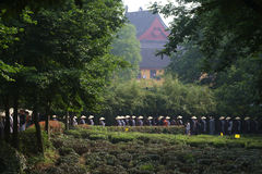 More than six hundred monks alms, along the way a big charity event. Royalty Free Stock Photography