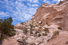 More treasures of New Mexico Stock Image