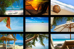 More tropic. Summertime theme photo collage composed of few images Royalty Free Stock Image