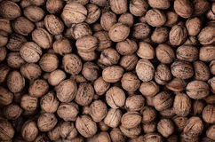 More walnut for background Royalty Free Stock Images