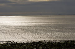 Morecambe Bay. Mud Flats in Morecambe Bay giving a gold metallic light effect Stock Photo