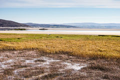 Morecambe Bay Royalty Free Stock Images