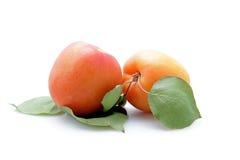 morel bac wiśni świeżej owoc brzoskwinie biały Fotografia Royalty Free