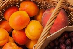 Morele, brzoskwinie, agresty w łozinowym koszu Fotografia Royalty Free