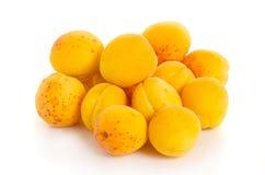 Moreli pomarańcze owoc Obraz Stock