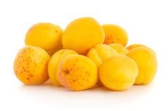 Moreli pomarańcze owoc Zdjęcie Royalty Free