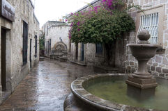 Morelia, México Fotos de Stock Royalty Free
