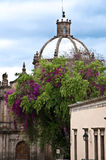Morelia, Mexiko lizenzfreie stockbilder