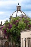 Morelia, Mexique Images libres de droits