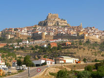 Morella Royalty Free Stock Photography