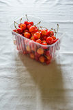 Morello Cherries Royalty Free Stock Photography